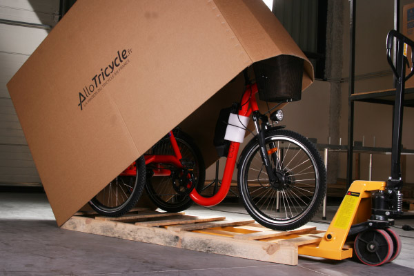 Packing & delivery 3 wheel bike